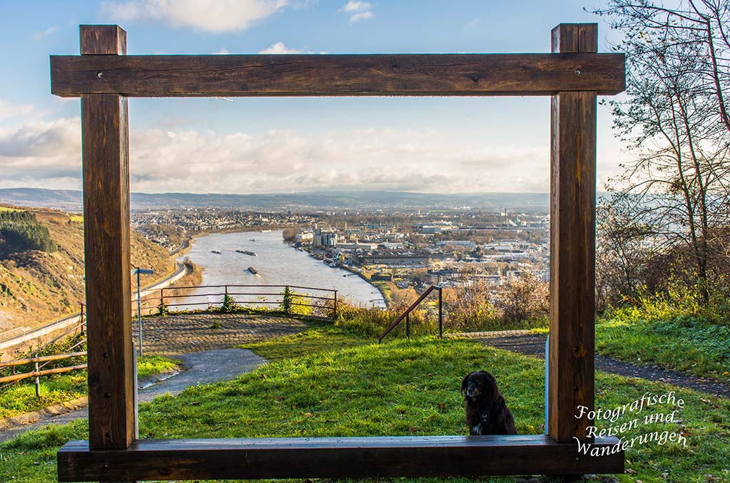 Aussicht auf den Rhein und Andernach