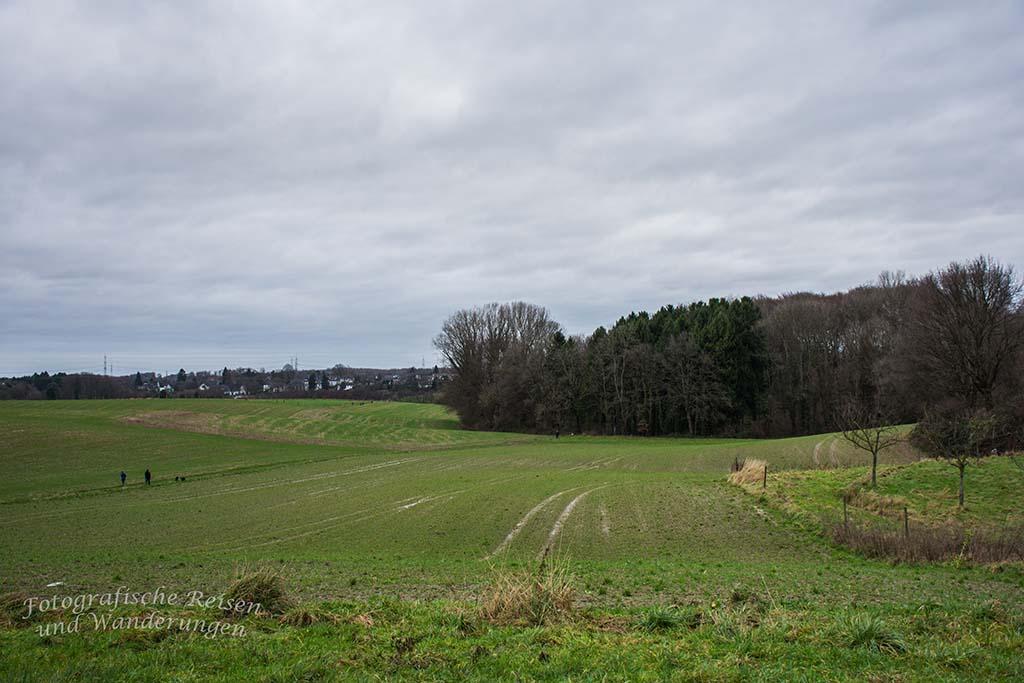 Dierath_Atzlenbach (5)