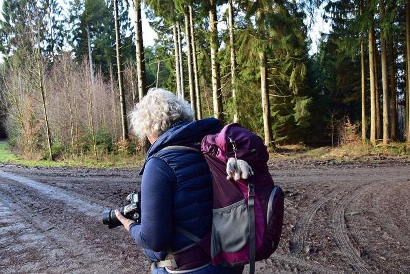 c) Tanja Visinski - Steppweste für alle Tage  Scheck