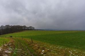 Pilgerpfad und Heerweg (76)