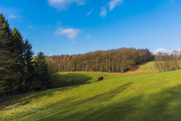 Rundwanderung von Wuppertal-Beyenburg (41)