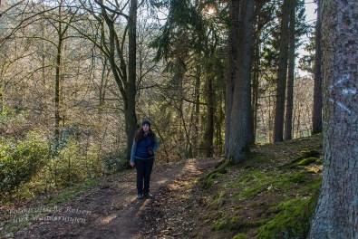 Und wieder ein Stück Wald