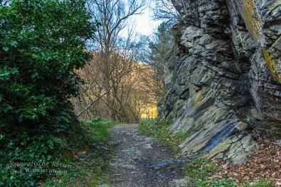 Hohe Felswände im Langfigtal und der immergrüne Ilex