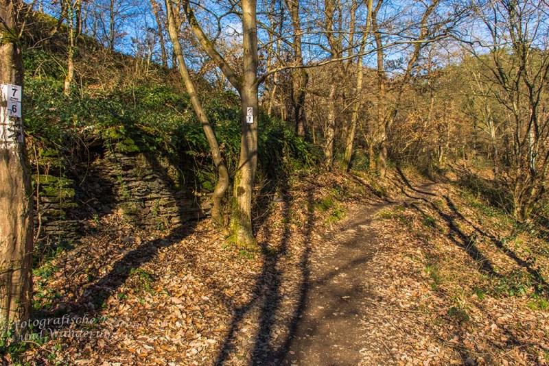 Aussichten und eine Burgruine an der Ahr (84)