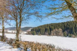 Gebirgsstelzen- und Schwarzstorchpfad (60)