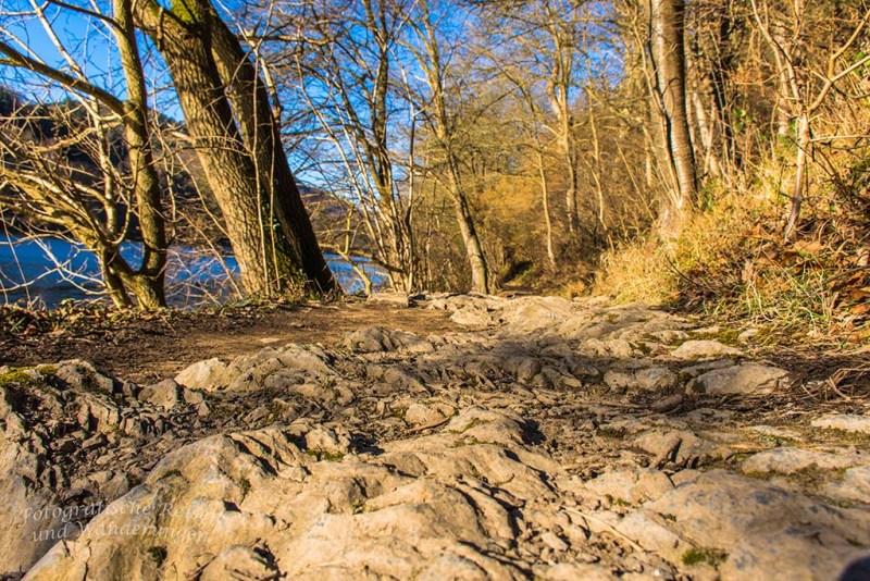 Heimbach und Dschungelpfad (30)