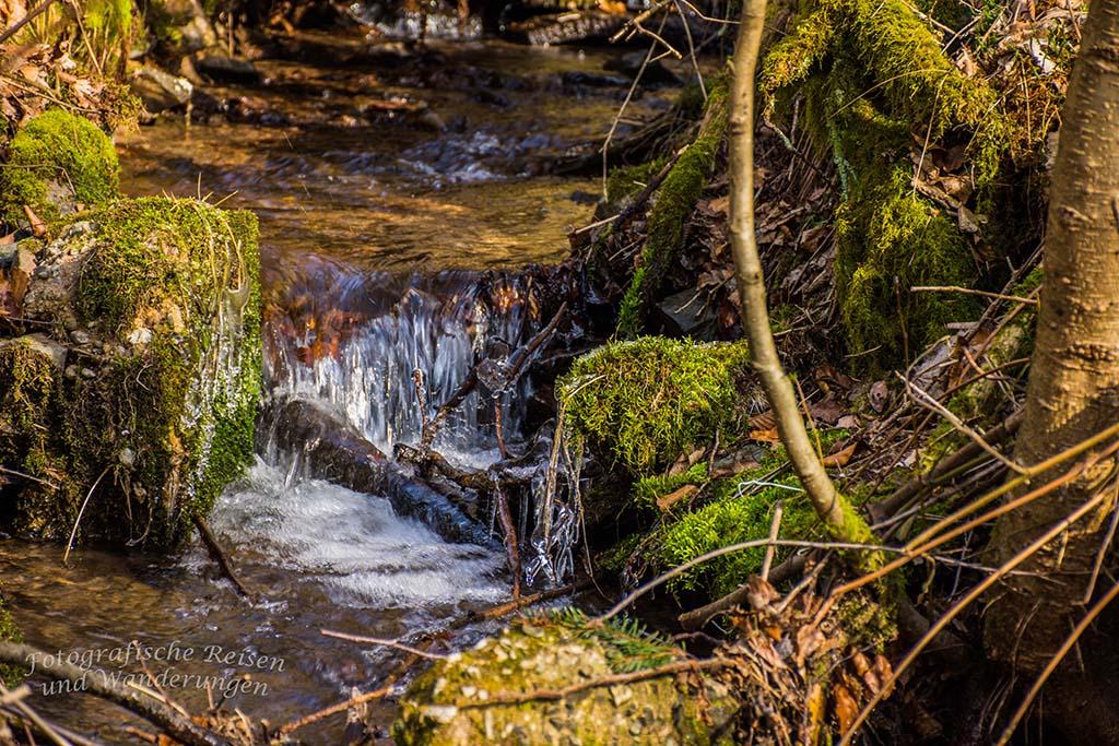 Vereister Zufluss zum Eifgenbach - Burscheider Schluchtenpfad