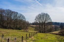 Die Wiesen zwischen Bellinghausen und Eschhausen