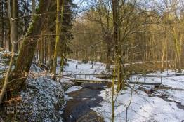 Winter am Eifgenbach (154)