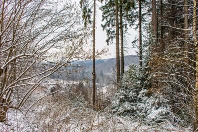 Winter am Eifgenbach (35)