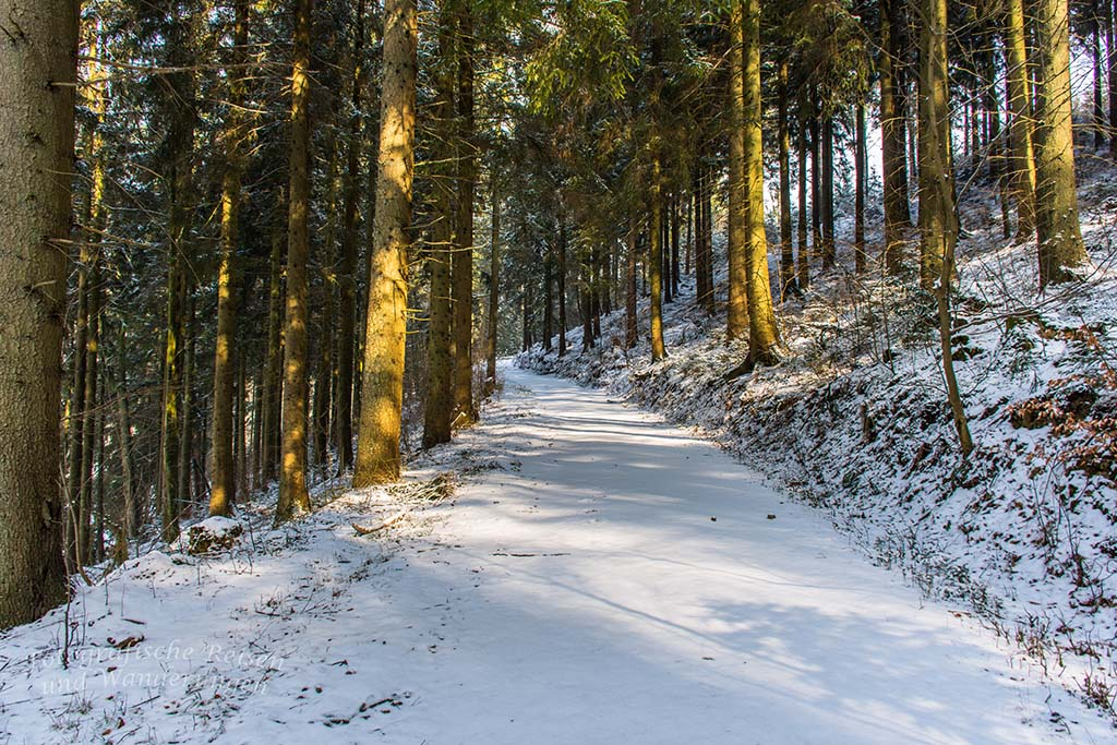 Winter am Eifgenbach (60)