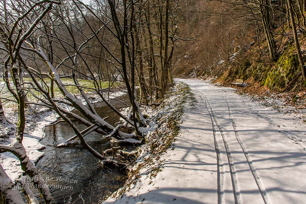 Winter am Eifgenbach (91)