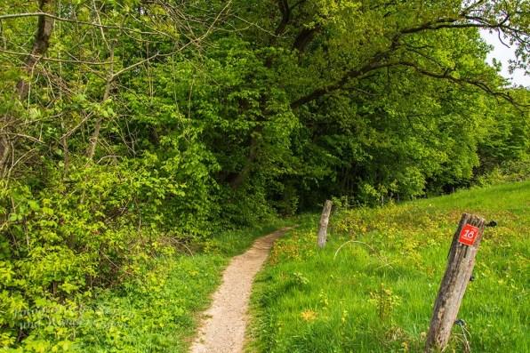 BergischerStreifzugBauernhofweg (157)