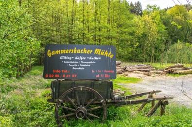 BergischerStreifzugBauernhofweg (34)