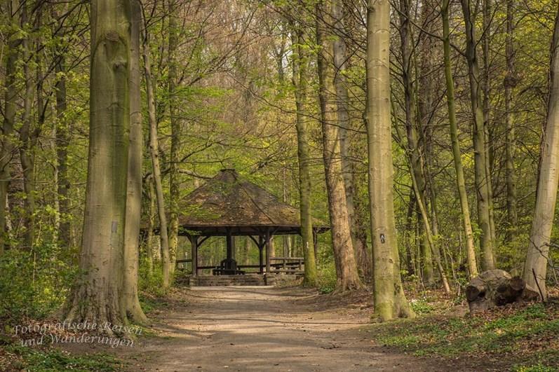 Westerholt Schloss und Wald (186)