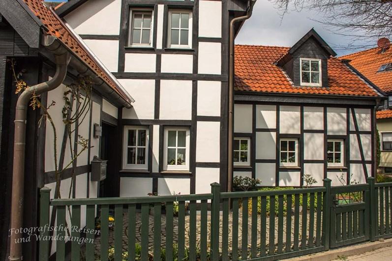 Westerholt Schloss und Wald (207)