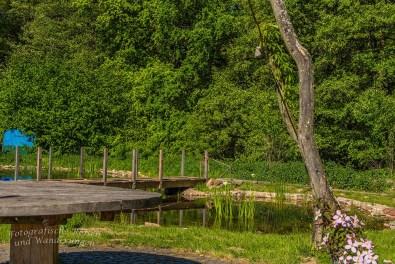 Teichanlage am Haus Wildenrath