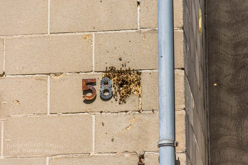 Bienenstock in der Hausfassade