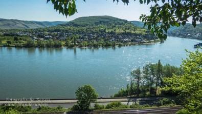 Und dann immer wieder diese Blicke auf den Rhein