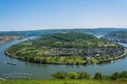 Der herrliche Blick auf den Rhein
