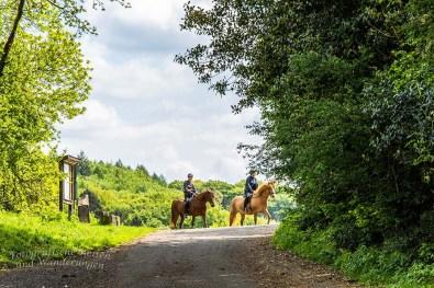 Zu Pferd durch das 7Gebirge