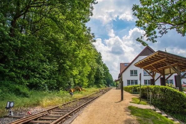 Schienen des Teuto-Express in Brochterbeck