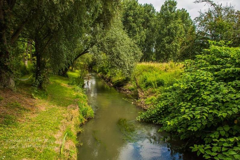Le Geer Nebenfluss der Maas