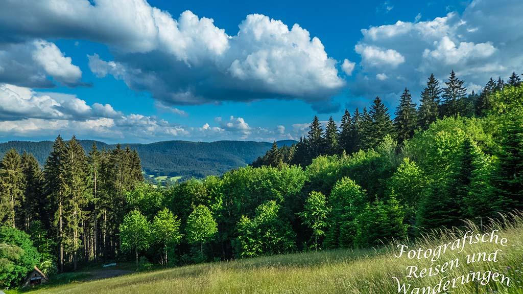 Urlaub im Nord-Schwarzwald