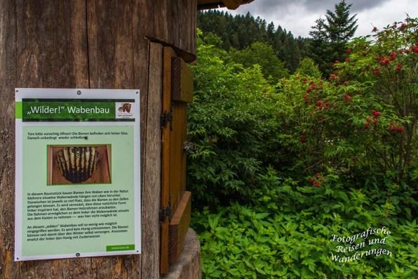 Wolf-und Baerenpark (30)