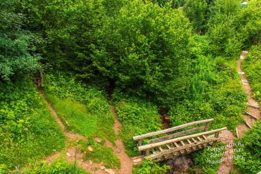 Wolf-und Baerenpark (5)