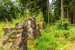 Am trockenen Bachbett des Weserbach (123)