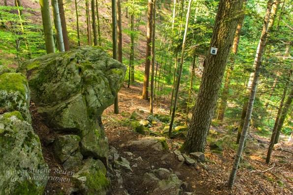 Der Himmelssteig in Bad Peterstal-Griesbach (41)