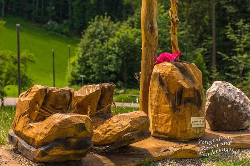 Der Schwarzwaldsteig (105)