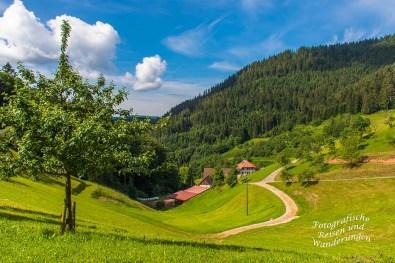 Der Schwarzwaldsteig (47)