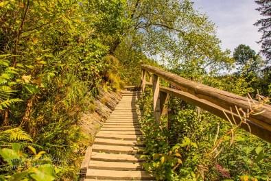 Hohes Venn_Wasserfall von Bayonne und Burg Reinhardstein (232)