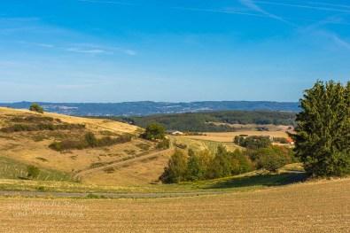 Die leeren Getreidefelder wirken in diesem Jahr noch ansprechend