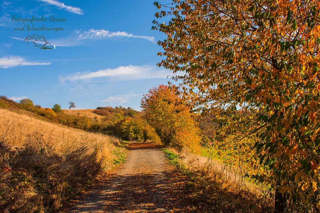 Herbst auf dem Traumpfädchen Paradiesweg Polch