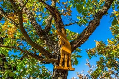 Ein Holzeselchen am Aussichtspunkt