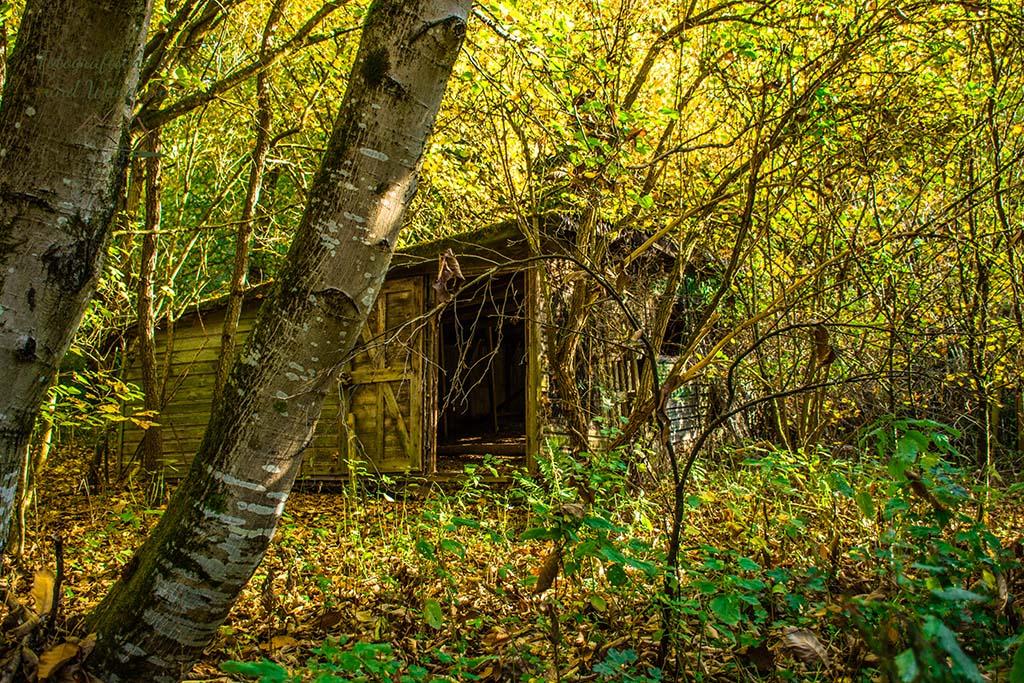 Ein alter Stall mitten im Wald