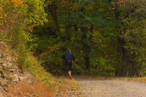 Läufer auf dem Waldweg