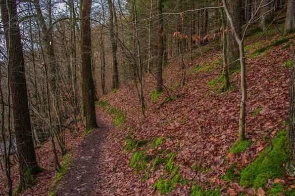 D1 Siefen, Wälder und Höhen (126)
