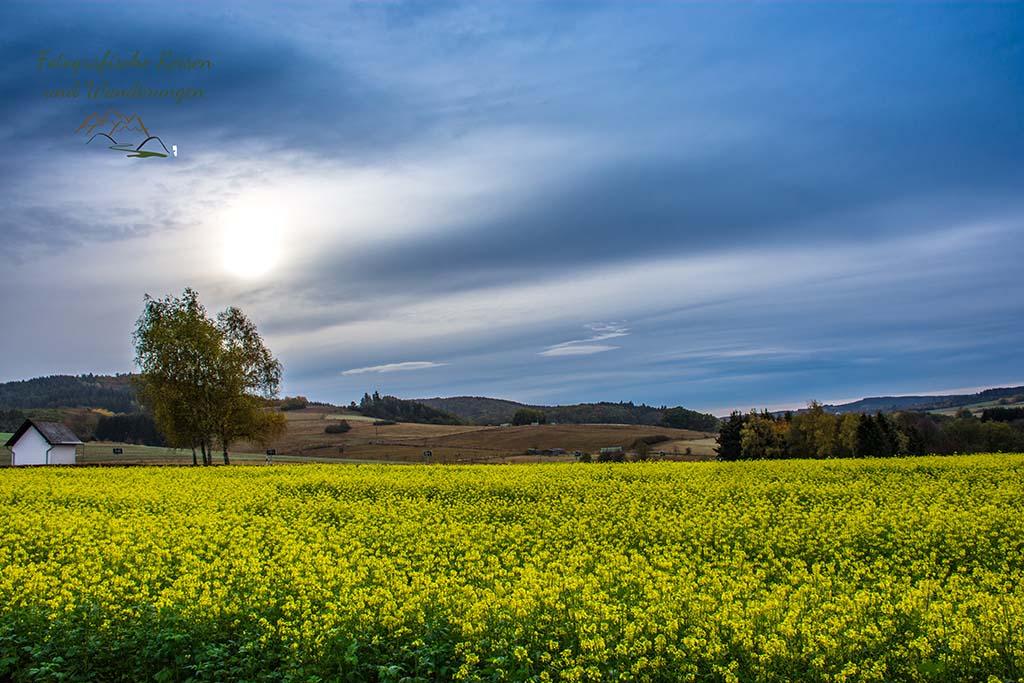 Rund um Heupenmühle - Wilde Eifel