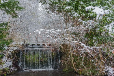 Sogar einen Wasserfall haben wir im Park - Rundgang durch Schlosspark Morsbroich