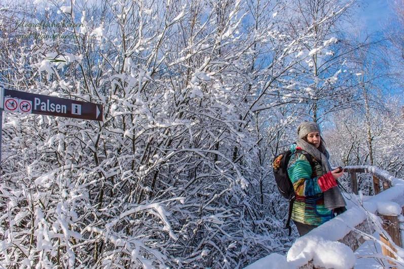 Schneewanderung in Muetzenich (102)