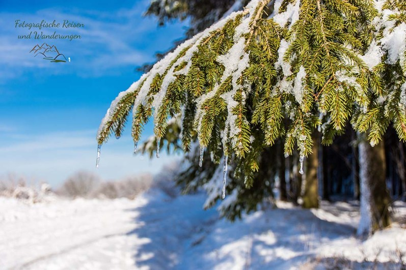 Auf dem Weg in Das Königliche Torfmoor im Schnee