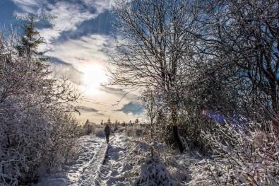 Schneewanderung in Muetzenich (18)