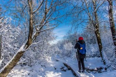Schneewanderung in Muetzenich (20)