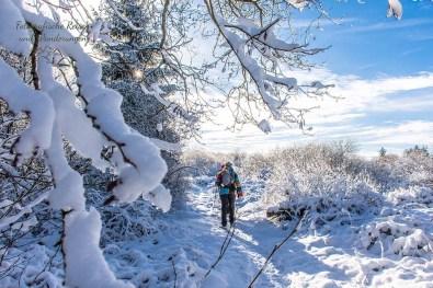 Schneewanderung in Muetzenich (48)