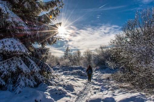 Schneewanderung in Muetzenich (54)