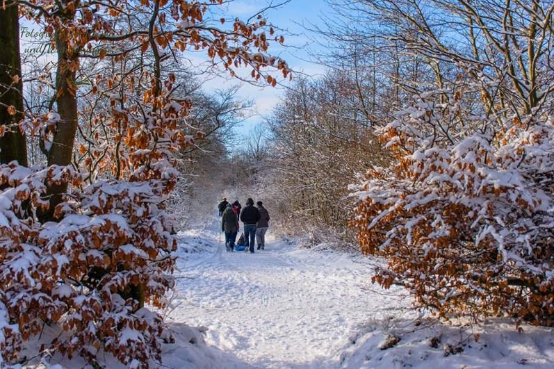 Schneewanderung in Muetzenich (95)
